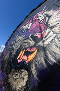 Colourful tiger painted by graffiti artist Sonny as part of Waterford Walls Festival