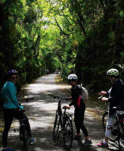 Waterford Camino Tours Cycling Group Durrow Ballyvoyle Tunnel Mindfulness