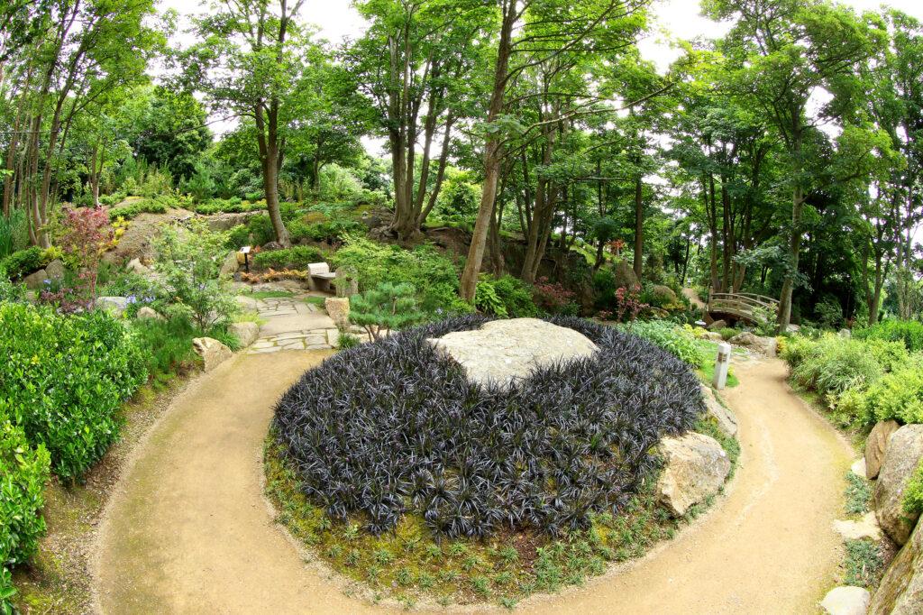 Lafcaido gardens